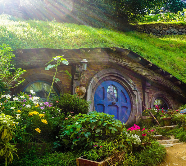 Women's Travel Club New Zealand Tour Tour - Hobbiton Movie Set