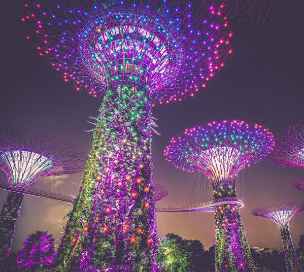 Women's Travel Club Singapore & Malaysia - Gardens by the Bay